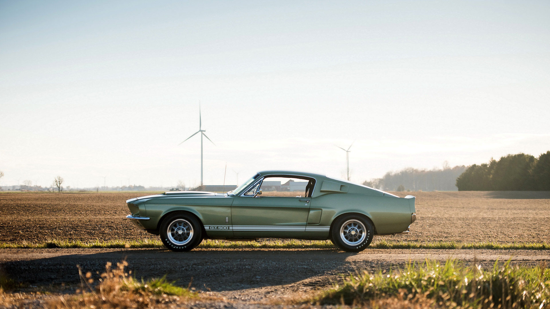 1967 Ford Shelby Mustang GT500