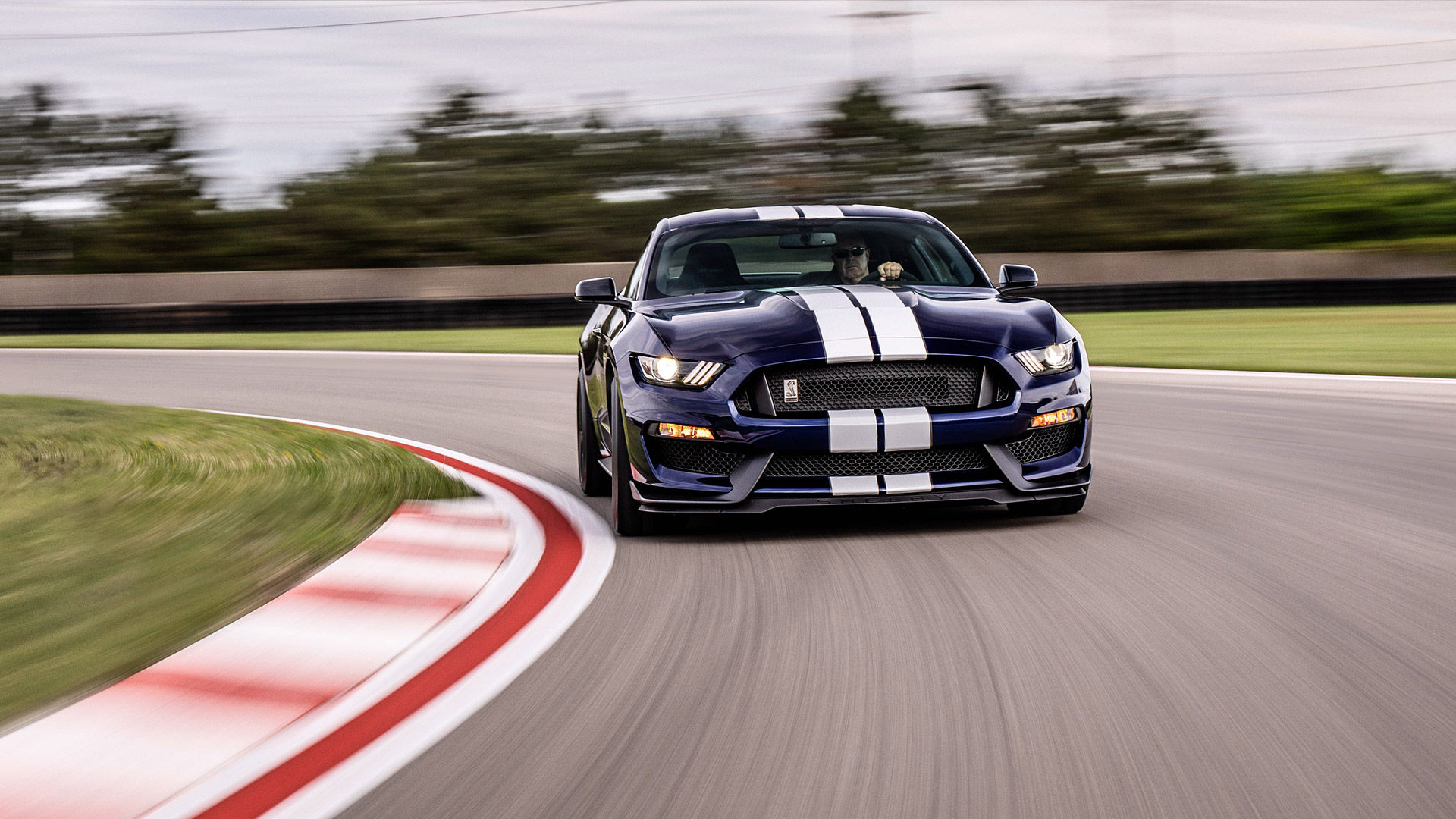 2019 Ford Shelby Mustang GT350
