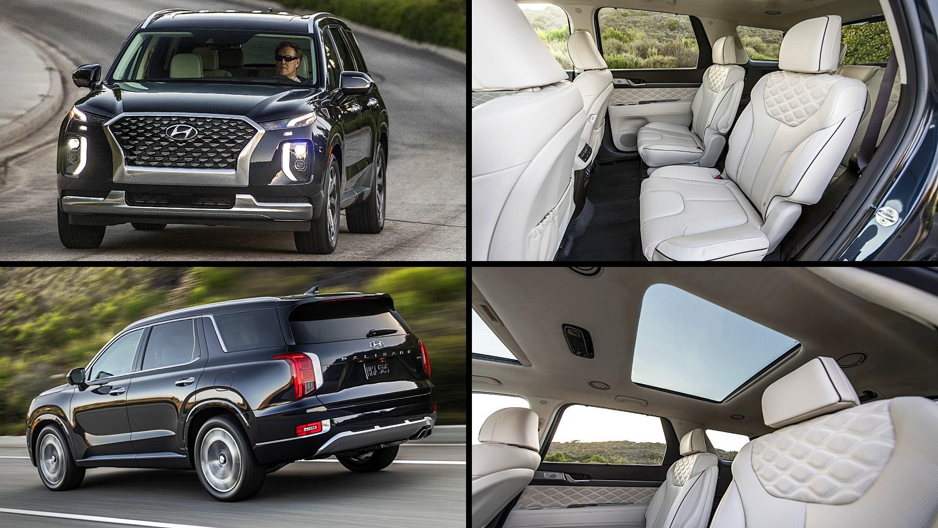2021 Hyundai Palisade Pictures Images